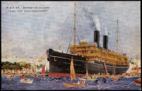 Lot 229 [2 of 4]:P&O Ships: collection of over 25 different cards with minimal duplication. Nice lot. (32)