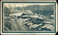 Lot 864 [3 of 8]:1908 Franco-British Exhibition: unused group comprising [1] 'HAULING TIMBER THROUGH FOREST' in bluish-grey; [2] 'BRITISH AND FOREIGN WOOLBUYERS INSPECTING WOOL' in bluish-grey, light corner stain; [3] 'A TASMANIAN TIMBER MILL' in bluish-grey with 'TASMANIAN GOVERNMENT TOURIST/AND INFORMATION BUREAU/OCEAN HOUSE, MARTIN PLACE/...SYDNEY' handstamp in violet on address side (damaged corners); [4] 'PREPARING POULTRY FOR EXPORT' in brown, repaired corner; [5] 'CARTING BLACKWOOD LOGS TO SCOTTSDALE' in brown; [6] 'ORCHARDS IN THE GLENORCHY VALLEY' in brown; [7] 'PACKING RABBITS FOR ENGLAND' in brown and [8] 'AN APPLE TROPHY' in brown; mostly fine. A difficult assemblage. (8)