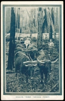 Lot 1063 [1 of 2]:1908 Franco-British Exhibition: 'HAULING TIMBER THROUGH FOREST' in bluish-grey, unused.