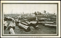 Lot 1065:1908 Franco-British Exhibition: 'CARTING BLACKWOOD LOGS TO SCOTTSDALE' in brown, unused.