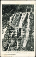 Lot 171 [2 of 4]:Waterfalls: with strength in Australia, appear to be all pre 1912, few overseas, mostly unused. Mixed condition. (40)