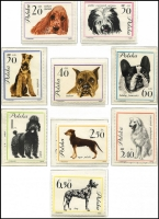 Lot 1062 [1 of 4]:Poland 1960-76 on Schaubek hingeless pages incl 1963 Dogs (9), Reptiles (12), 1964 Flowers (12), 1967 Paintings (8), 1970 Game Birds (8), etc, many other complete sets. Also a page of 1995 issues. Cat £200+. (c.300)