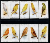 Lot 132 [1 of 3]:Cigarette Cards: John Player Aviary & Cage Birds set of 50, 1960s Shell 'Project Card Album/Birds' set of 60 cards (spine damage to album, cards ok), also duplicated selection of Tuckfields Australiana Birds (50+). Mixed condition. (160+)