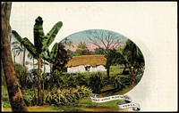 Lot 1590 [2 of 2]:1906 1d Stationery Postal Card HG#1[5] 'Pine-Apple Plantation', Tonga, fine unused.
