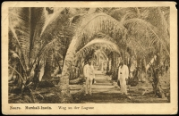 Lot 1436 [3 of 5]:C1900 Sepia Postcards: all with 'Nauru. Marshall-Inseln' showing local scenes incl 'Wasserholendes Mädchen', 'Eingeborene Kinder', 'Weg an der Lagune', 'Nauru-Mädchen' and 'Strand'. All divided back & unaddressed. Most with 'W. Storch Photo' printed on reverse. Odd minor blemish. (5)