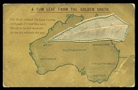 Lot 38:Australia: Map of Australia with Gum Leaf attached 'A Gum Leaf from the Golden South', unusual card.