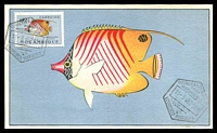Lot 3869:1952 Coral Fish 10c Coral Fish tied to fine maxi card by Lourenco Marques cancel 11-3-52, nice early card.