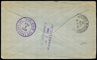 Lot 1132 [2 of 2]:1906 (Apr 3) printed OHMS registered cover to USA with 2½d pair (one unit defective) & ½d tied by 'CAMPERDOWN/AP3/06/VICTORIA' datestamp, Melbourne, San Francisco transits & Camden (NJ) arrival backstamps.