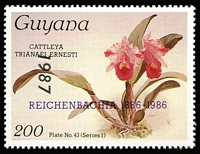 Lot 1168 [1 of 4]:Orchids: Guyana 1985-89 Reichenbachia issues Series 1 for Plates 1 to 92, vendor states complete as per Gibbons listing (not guaranteed), various overprints/surcharges, no M/Ss, some duplicates, all appear to be fresh MUH. (350 approx)