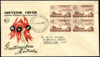 Lot 466 [2 of 2]:Wesley 1955 Cobb & Co set in blocks of 4 tied to separate Sturt's Desert Pea souvenir envelopes by back-dated Largs North '6JY55' FDI datestamps. (2)