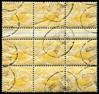 Lot 1376 [1 of 3]:1885-1907 Blocks of Nine with 1885-93 2d grey SG #96 (few nibbed perfs) cancelled with 'POST OFFICE/MARBLE BAR' double-oval datestamps in violet, 1896 2d bright yellow SG #113 inter-pane block and 2½d blue SG #114 with indistinct rubber oval datestamps. (3 items)