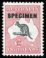Lot 612:£2 Black & Rose Optd 'SPECIMEN' Type D variety White flaw at top of kangaroo's arm [L41] BW #58x(V)m, excellent centring, superb MUH, Cat $7,500 (as an unoverprinted, hinged stamp).