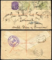 Lot 1169 [2 of 11]:1874-1911 Postal History Group with covers x13 (four are registered) including 1888 (Jun 8) Adelaide to USA franked at 6d and showing US tax handstamp, 1892 (Mar 4) Rhine Villa to Russia franked at 3½d, 1892 (Mar 11) Murray Bridge to Melbourne franked at 2d & bearing Victoria 1d Postage Due, 1903 (Oct 23) registered Adelaide to USA bearing 2d Sideface and 3d Thin 'POSTAGE' Long Toms x2 and 1910 (Dec 12) cover Port Augusta to Dunedin bearing 1d Sideface and 4d Thin 'POSTAGE' Long Tom; also OHMS Registration Envelope, stationery wrapper and a postcard. A most interesting selection. (16)