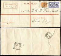 Lot 1169 [1 of 11]:1874-1911 Postal History Group with covers x13 (four are registered) including 1888 (Jun 8) Adelaide to USA franked at 6d and showing US tax handstamp, 1892 (Mar 4) Rhine Villa to Russia franked at 3½d, 1892 (Mar 11) Murray Bridge to Melbourne franked at 2d & bearing Victoria 1d Postage Due, 1903 (Oct 23) registered Adelaide to USA bearing 2d Sideface and 3d Thin 'POSTAGE' Long Toms x2 and 1910 (Dec 12) cover Port Augusta to Dunedin bearing 1d Sideface and 4d Thin 'POSTAGE' Long Tom; also OHMS Registration Envelope, stationery wrapper and a postcard. A most interesting selection. (16)